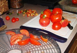 Tomato drying0609