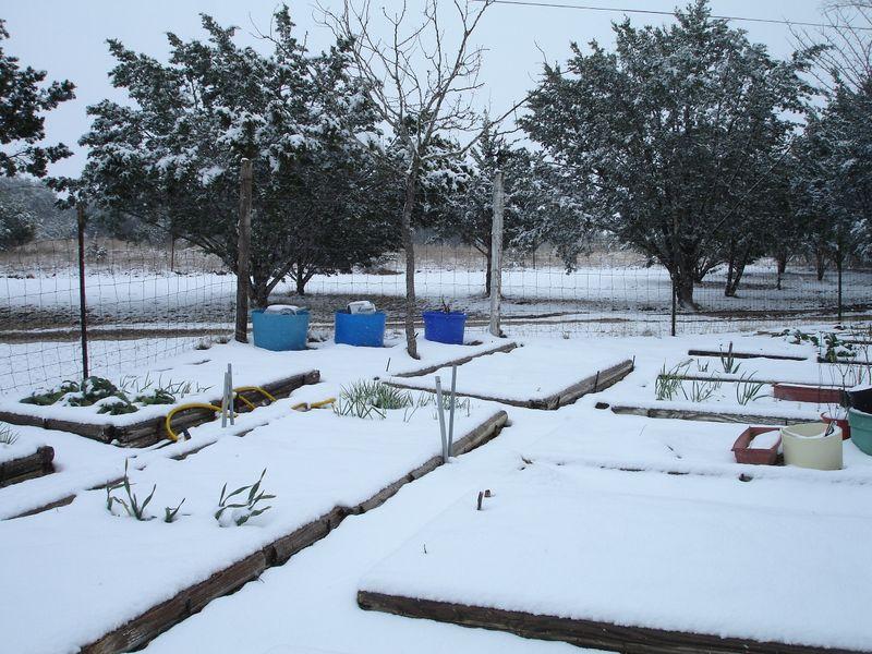 Garden2 small