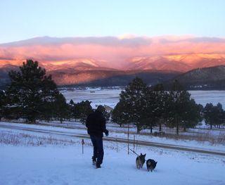 Bill dogs snow1 1210