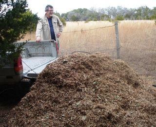 Mulch pile 1.11