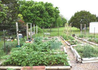 Garden 4.28.13