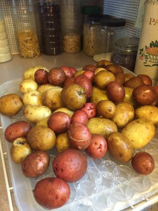 Potatoes5.18.17