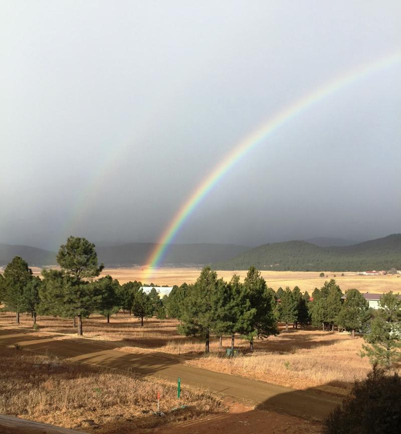Rainbow12.16
