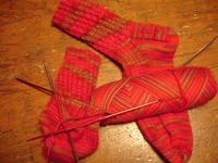Geranium_socks0306