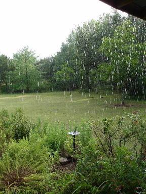 Rain0606