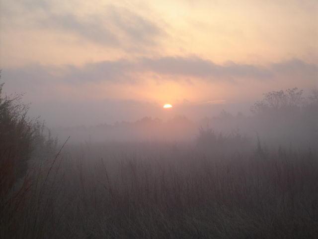 Sunrise_fog_0106